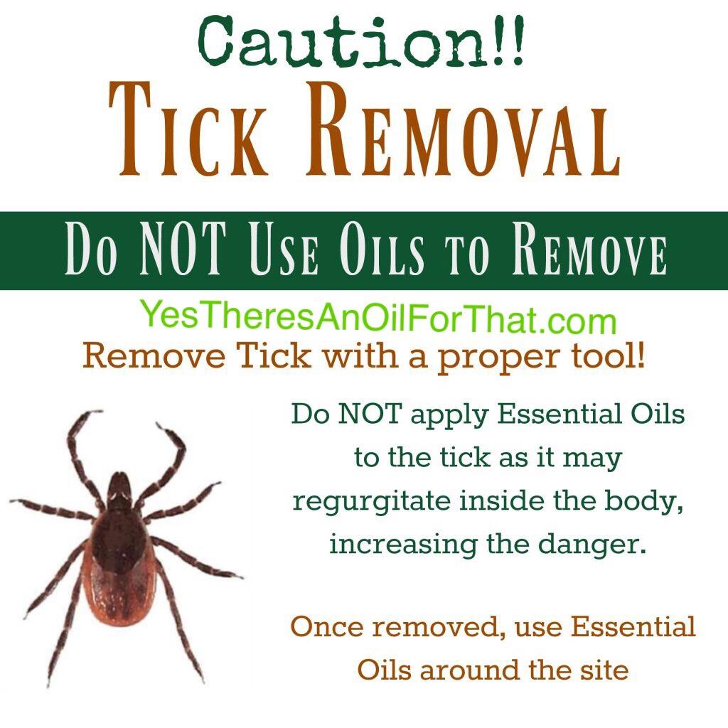 Ticks Bug Repellent